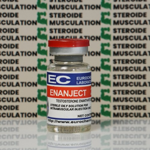 Enanject (Testosterone Enanthato) 250 mg Eurochem Labs   SMC-0149