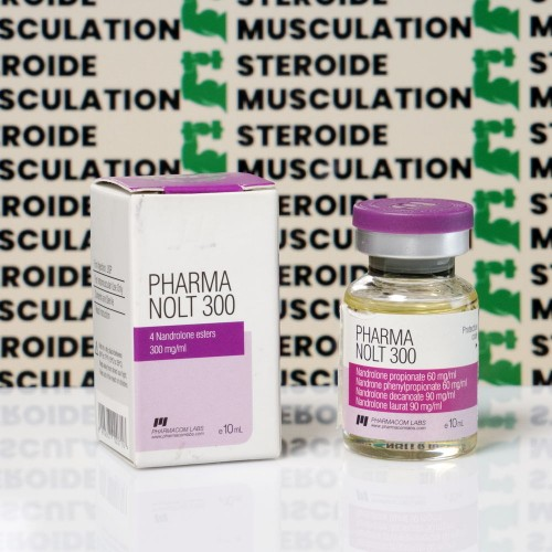 Pharma Nolt300 300 mg Pharmacom Labs | SMC-0328