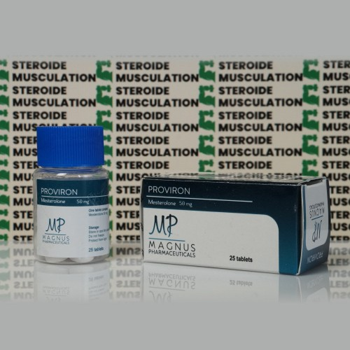 Proviron 50 mg Magnus Pharmaceuticals   SMC-0286 buy