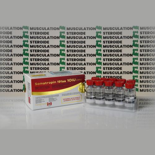 Somatropin 191aa 10 IU Canada Peptides | SMC-0293