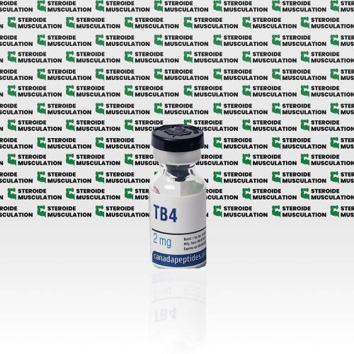 TB 500 2 mg Canada Peptides | SMC-0193