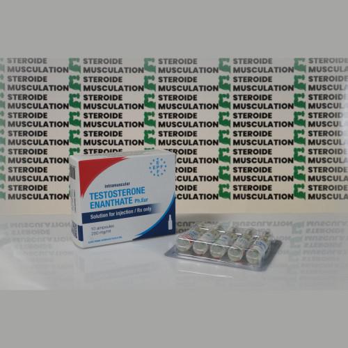 Testosterona Enanthate 250 mg Euro Prime Farmaceuticals | SMC-0268